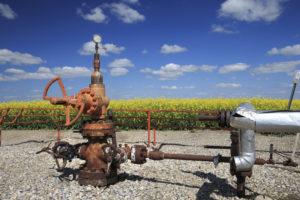 gas naturale terna italgas snam