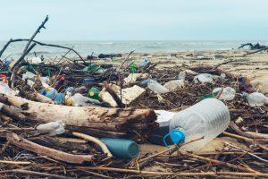 sostenibilità plastica inquinamento