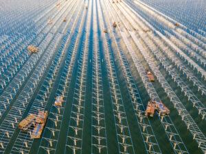 clima neutralità carbonica fotovoltaico rinnovabili irena