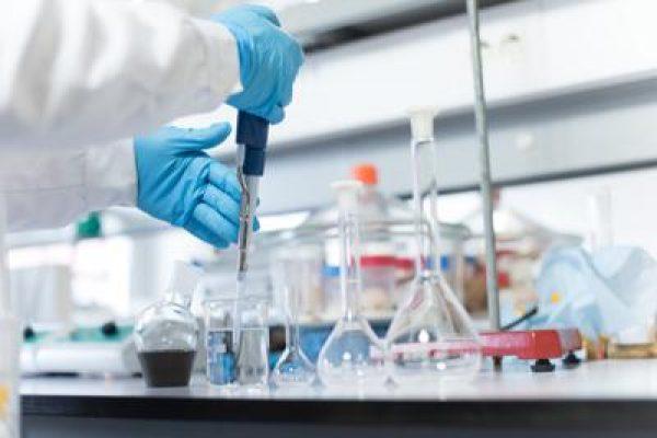 anticorpi ricerca