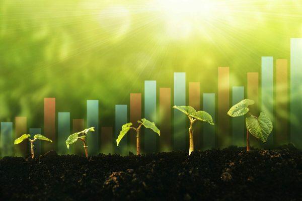 bioeconomia, sostenibilità