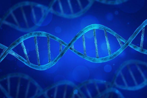 biofarma dna biotech galapagos