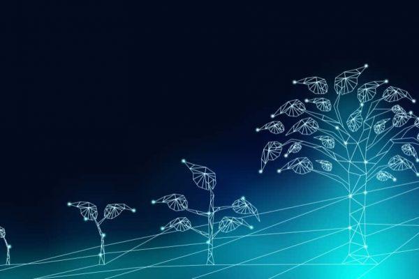 green digital transformation