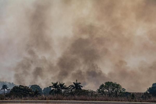 Aerial image of burning in the city of Alta Floresta in the state of Mato Grosso. ANSA/ Victor Moriyama / Greenpeace +++ ANSA PROVIDES ACCESS TO THIS HANDOUT PHOTO TO BE USED SOLELY TO ILLUSTRATE NEWS REPORTING OR COMMENTARY ON THE FACTS OR EVENTS DEPICTED IN THIS IMAGE; NO ARCHIVING; NO LICENSING +++