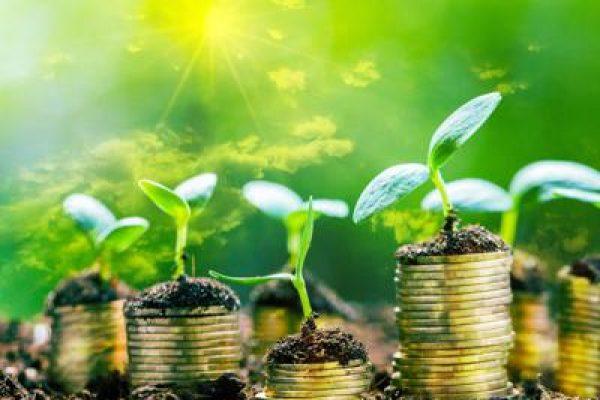 investimenti_green_sviluppo_sostenibile_ftlia-kfwH-1280x960@Web.jpg