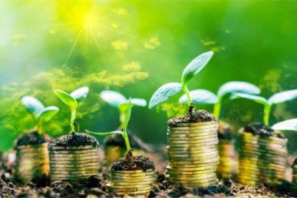investimenti_green_sviluppo_sostenibile_ftlia.jpg