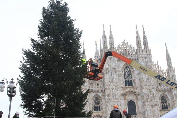 Montaggio dell ' Albero di Natale,