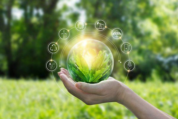 Sostenibilità; Green; Ambiente; Natura