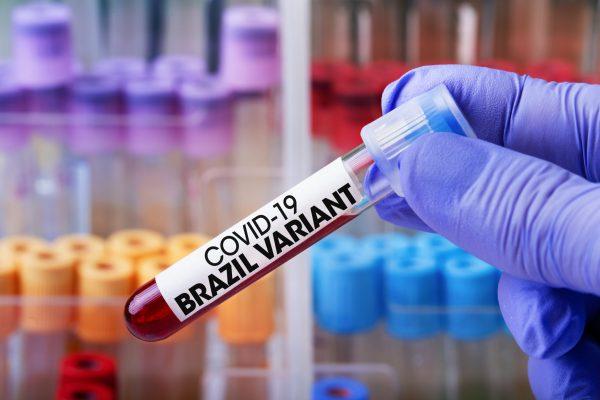 vaccino variante Brasiliana