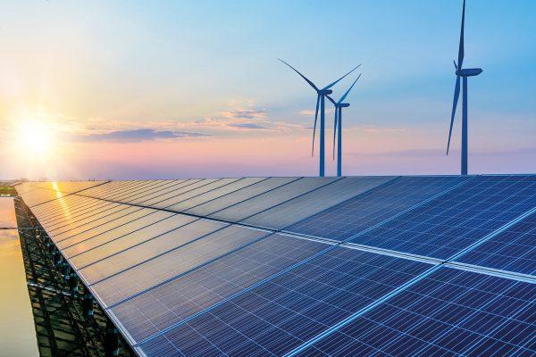 sostenibilità, startup sostenibilità